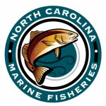 NC DMF, division of marine fisheries